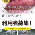 宝塚すみれ発電所第4号が完成!